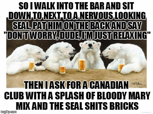 "SO I WALK INTO THE BAR AND SIT DOWN TO NEXT TO A NERVOUS LOOKING SEAL, PAT HIM ON THE BACK AND SAY ""DON'T WORRY, DUDE, I'M JUST RELAXING"" TH 