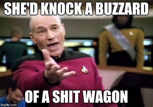 Picard Wtf Meme | SHE'D KNOCK A BUZZARD OF A SHIT WAGON | image tagged in memes,picard wtf | made w/ Imgflip meme maker