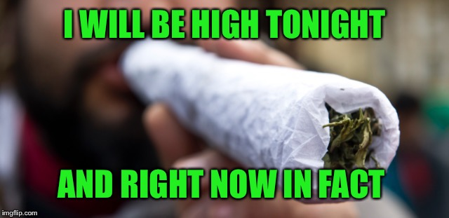 Big spliff | I WILL BE HIGH TONIGHT AND RIGHT NOW IN FACT | image tagged in big spliff | made w/ Imgflip meme maker