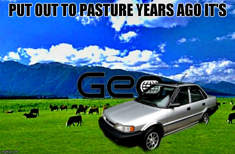 PUT OUT TO PASTURE YEARS AGO IT'S | made w/ Imgflip meme maker