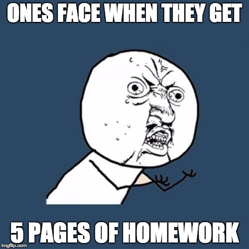 Y U No Meme | ONES FACE WHEN THEY GET 5 PAGES OF HOMEWORK | image tagged in memes,y u no | made w/ Imgflip meme maker