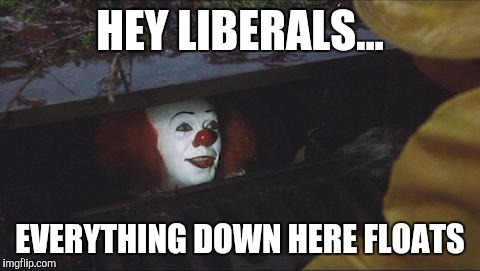 Stephen King IT | HEY LIBERALS... EVERYTHING DOWN HERE FLOATS | image tagged in stephen king it | made w/ Imgflip meme maker