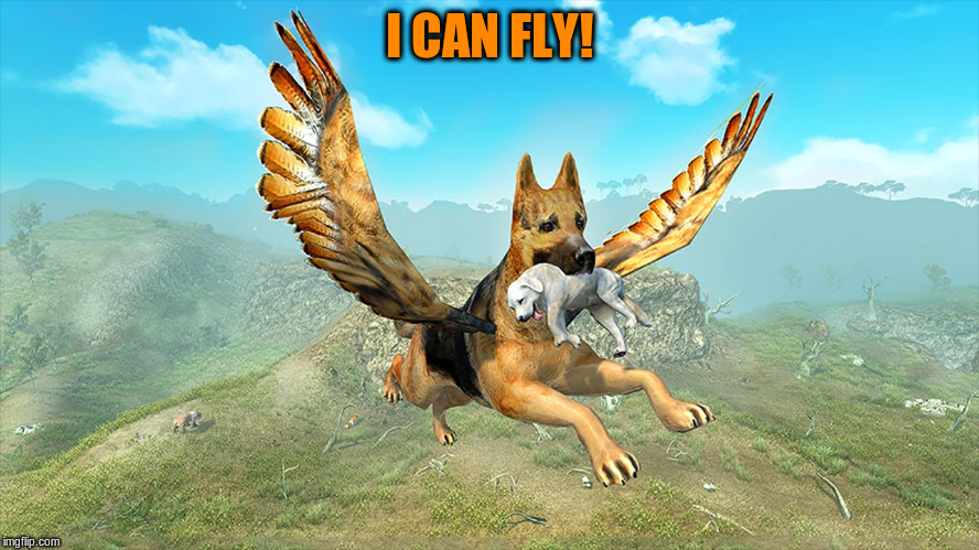I CAN FLY! | made w/ Imgflip meme maker
