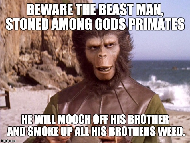 PLANET OF THE DANK | BEWARE THE BEAST MAN, STONED AMONG GODS PRIMATES HE WILL MOOCH OFF HIS BROTHER AND SMOKE UP ALL HIS BROTHERS WEED. | image tagged in planet of the apes,pot,weed,stoned,stoner | made w/ Imgflip meme maker
