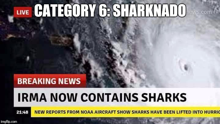 The real sharknado |  CATEGORY 6: SHARKNADO | image tagged in irma | made w/ Imgflip meme maker