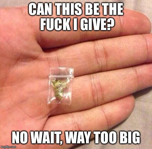 Wow | CAN THIS BE THE F**K I GIVE? NO WAIT, WAY TOO BIG | image tagged in weed sack,i dont give a fuck,kush | made w/ Imgflip meme maker