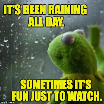 IT'S BEEN RAINING ALL DAY. SOMETIMES IT'S FUN JUST TO WATCH. | made w/ Imgflip meme maker