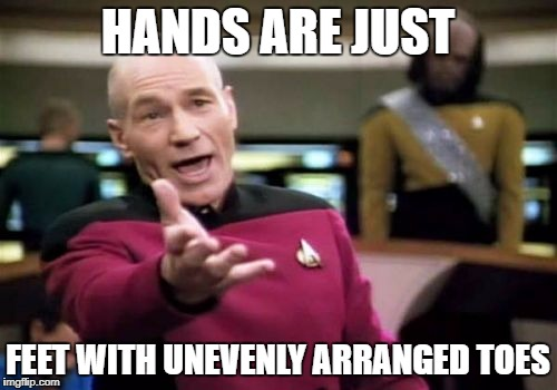 Picard Wtf Meme | HANDS ARE JUST FEET WITH UNEVENLY ARRANGED TOES | image tagged in memes,picard wtf | made w/ Imgflip meme maker