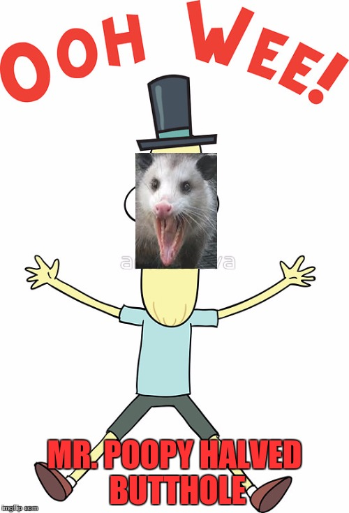 MR. POOPY HALVED BUTTHOLE | image tagged in possum | made w/ Imgflip meme maker