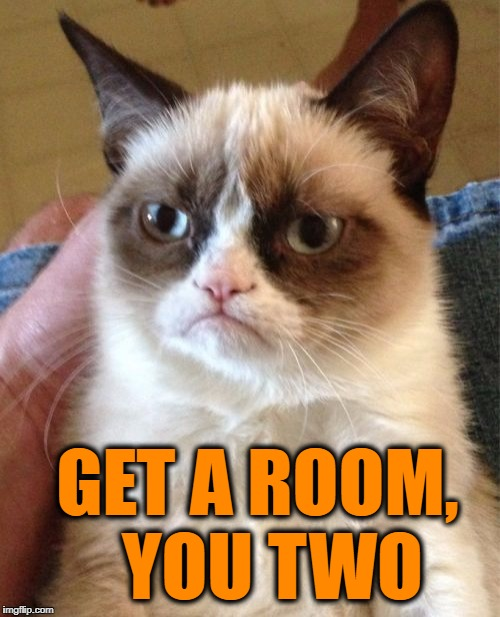 Grumpy Cat Meme | GET A ROOM,  YOU TWO | image tagged in memes,grumpy cat | made w/ Imgflip meme maker