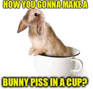 HOW YOU GONNA MAKE A BUNNY PISS IN A CUP? | made w/ Imgflip meme maker
