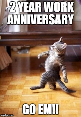 Cool Cat Stroll Meme | 2 YEAR WORK ANNIVERSARY GO EM!! | image tagged in memes,cool cat stroll | made w/ Imgflip meme maker