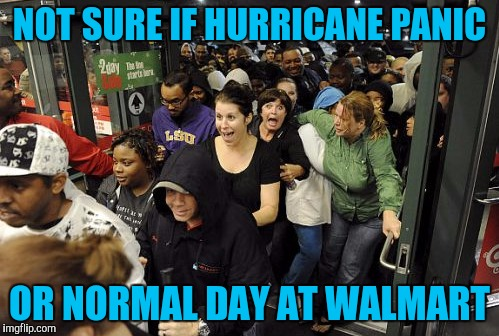 Florida shoppers stocking up on Hurricane supplies | NOT SURE IF HURRICANE PANIC OR NORMAL DAY AT WALMART | image tagged in black friday mob,walmart,hurricane harvey,hurricane irma,memes | made w/ Imgflip meme maker