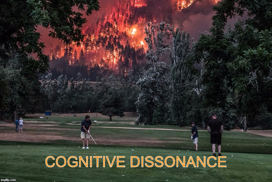 COGNITIVE DISSONANCE | image tagged in cognitive dissonanace | made w/ Imgflip meme maker