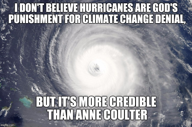 Hurricane Satellite Image | I DON'T BELIEVE HURRICANES ARE GOD'S PUNISHMENT FOR CLIMATE CHANGE DENIAL, BUT IT'S MORE CREDIBLE THAN ANNE COULTER | image tagged in hurricane satellite image | made w/ Imgflip meme maker