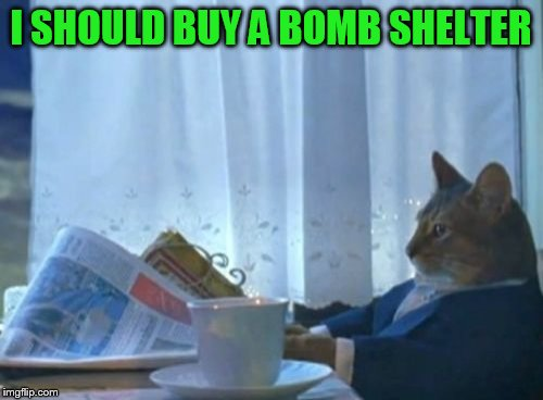 I Should Buy A Boat Cat Meme | I SHOULD BUY A BOMB SHELTER | image tagged in memes,i should buy a boat cat | made w/ Imgflip meme maker
