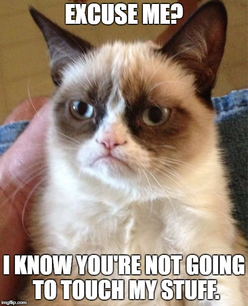 Grumpy Cat Meme | EXCUSE ME? I KNOW YOU'RE NOT GOING TO TOUCH MY STUFF. | image tagged in memes,grumpy cat | made w/ Imgflip meme maker