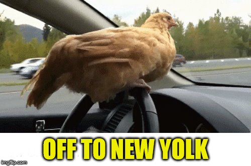 IIIIIIIIIIIIIIII OFF TO NEW YOLK | made w/ Imgflip meme maker
