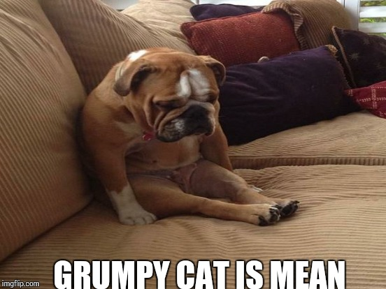 GRUMPY CAT IS MEAN | made w/ Imgflip meme maker