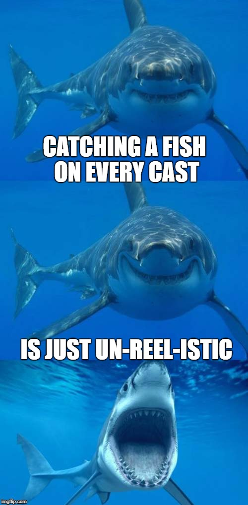 Jaws goes fishing | CATCHING A FISH ON EVERY CAST IS JUST UN-REEL-ISTIC | image tagged in bad shark pun,memes,dashhopes,template,fishing,sharks | made w/ Imgflip meme maker