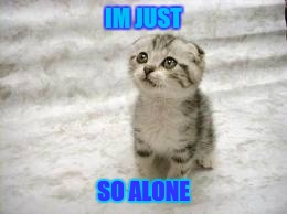 Sad Cat | IM JUST SO ALONE | image tagged in memes,sad cat | made w/ Imgflip meme maker