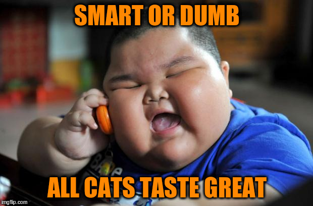 SMART OR DUMB ALL CATS TASTE GREAT | made w/ Imgflip meme maker