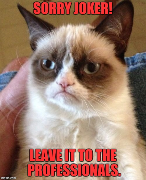 Grumpy Cat Meme | SORRY JOKER! LEAVE IT TO THE PROFESSIONALS. | image tagged in memes,grumpy cat | made w/ Imgflip meme maker