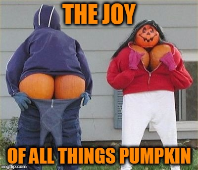 Fall is my Favorite Time of Year!! | THE JOY OF ALL THINGS PUMPKIN | image tagged in meme,funny,mooning scarecrows,autumn,fall,halloween | made w/ Imgflip meme maker
