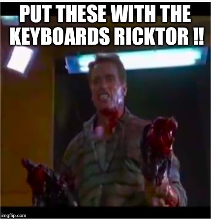 See you at the party Victor! | PUT THESE WITH THE KEYBOARDS RICKTOR !! | image tagged in richtor,is not victor,funny memes,lol,arnold the le goof | made w/ Imgflip meme maker