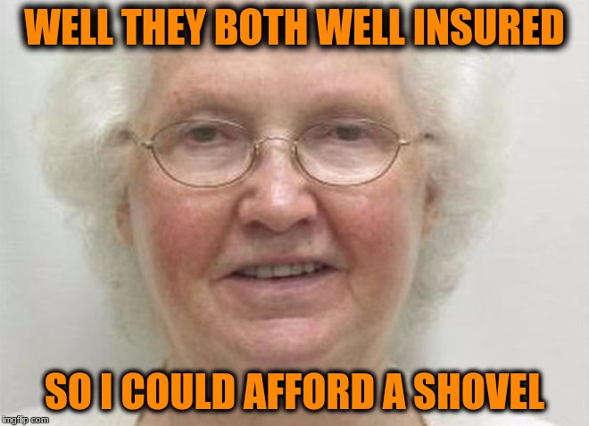 WELL THEY BOTH WELL INSURED SO I COULD AFFORD A SHOVEL | made w/ Imgflip meme maker