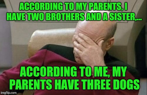 They're spoiled more than I ever was, but it doesn't stop me from buggin' the sh!t outta them. | ACCORDING TO MY PARENTS, I HAVE TWO BROTHERS AND A SISTER,... ACCORDING TO ME, MY PARENTS HAVE THREE DOGS | image tagged in memes,captain picard facepalm,sewmyeyesshut,dogs | made w/ Imgflip meme maker