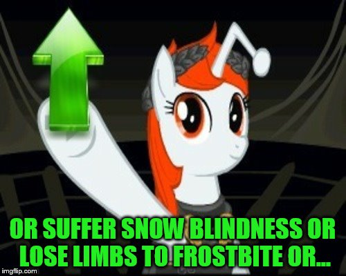 OR SUFFER SNOW BLINDNESS OR LOSE LIMBS TO FROSTBITE OR... | made w/ Imgflip meme maker