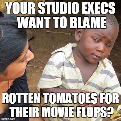 Third World Skeptical Kid Meme | YOUR STUDIO EXECS WANT TO BLAME ROTTEN TOMATOES FOR THEIR MOVIE FLOPS? | image tagged in memes,third world skeptical kid | made w/ Imgflip meme maker