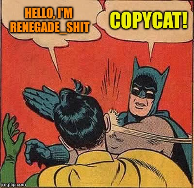 Let's agree to end the copycat accounts - what's your opinion? | HELLO, I'M RENEGADE_SHIT COPYCAT! | image tagged in memes,batman slapping robin,copycat | made w/ Imgflip meme maker