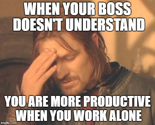 Sort of like Thorogood | WHEN YOUR BOSS DOESN'T UNDERSTAND YOU ARE MORE PRODUCTIVE WHEN YOU WORK ALONE | image tagged in memes,frustrated boromir | made w/ Imgflip meme maker