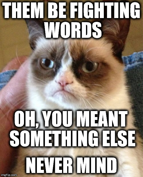 Grumpy Cat Meme | THEM BE FIGHTING WORDS NEVER MIND OH, YOU MEANT SOMETHING ELSE | image tagged in memes,grumpy cat | made w/ Imgflip meme maker