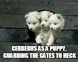 Heckin adorable | CERBERUS AS A PUPPY, GUARDING THE GATES TO HECK | image tagged in heck,good boi,cerberus,pupper,puppy | made w/ Imgflip meme maker