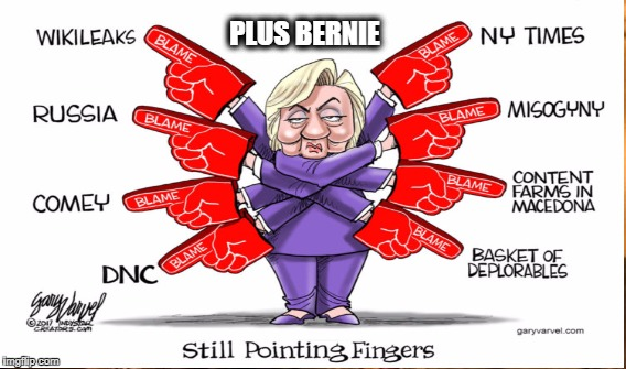State of Denial |  PLUS BERNIE | image tagged in clinton,blame game,denial | made w/ Imgflip meme maker