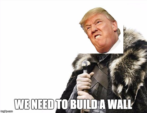 Brace Yourselves X is Coming Meme | WE NEED TO BUILD A WALL | image tagged in memes,brace yourselves x is coming | made w/ Imgflip meme maker