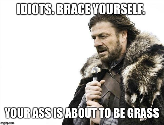 Brace Yourselves X is Coming Meme | IDIOTS. BRACE YOURSELF. YOUR ASS IS ABOUT TO BE GRASS | image tagged in memes,brace yourselves x is coming | made w/ Imgflip meme maker