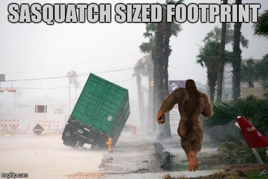 SASQUATCH SIZED FOOTPRINT | made w/ Imgflip meme maker