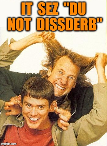 "DUMB and dumber | IT  SEZ  ""DU NOT  DISSDERB"" 