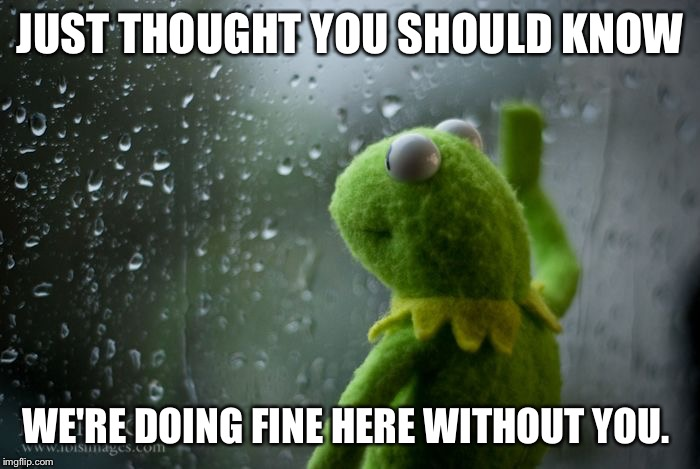 kermit window | JUST THOUGHT YOU SHOULD KNOW WE'RE DOING FINE HERE WITHOUT YOU. | image tagged in kermit window | made w/ Imgflip meme maker
