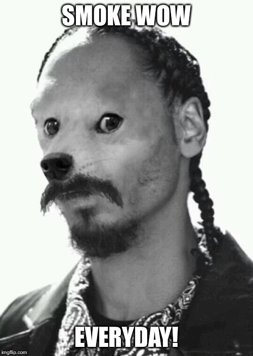 SMOKE WOW EVERYDAY! | image tagged in snoopdoge | made w/ Imgflip meme maker