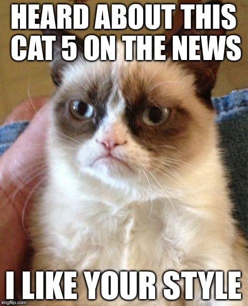 Grumpy Cat Meme | HEARD ABOUT THIS CAT 5 ON THE NEWS I LIKE YOUR STYLE | image tagged in memes,grumpy cat | made w/ Imgflip meme maker