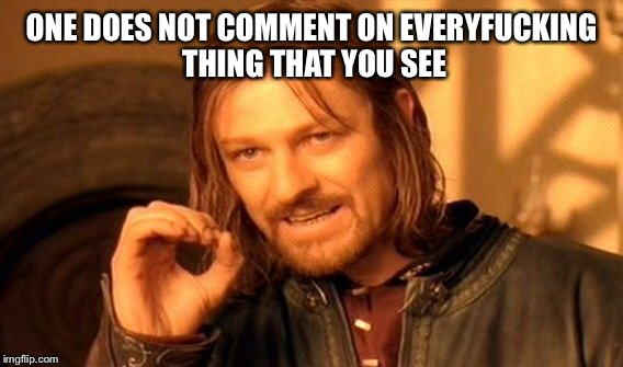 Or hear. | ONE DOES NOT COMMENT ON EVERYF**KING THING THAT YOU SEE | image tagged in memes,one does not simply,adult,be,meme,funny | made w/ Imgflip meme maker