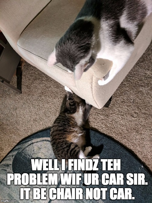 WELL I FINDZ TEH PROBLEM WIF UR CAR SIR. IT BE CHAIR NOT CAR. | image tagged in kat mechanic,AdviceAnimals | made w/ Imgflip meme maker