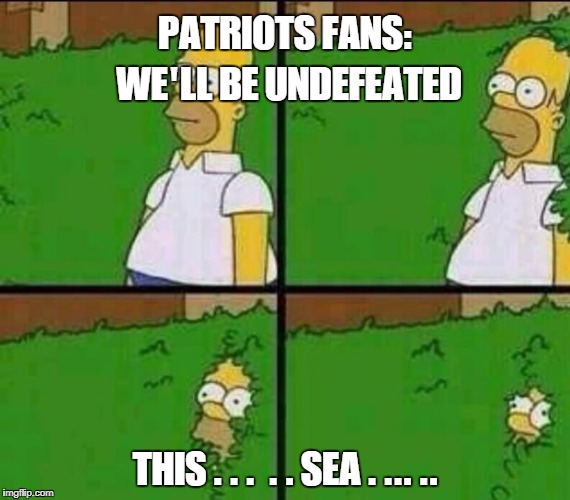 Homer Simpson in Bush - Large | PATRIOTS FANS: WE'LL BE UNDEFEATED THIS . . .  . . SEA . ... .. | image tagged in homer simpson in bush - large | made w/ Imgflip meme maker