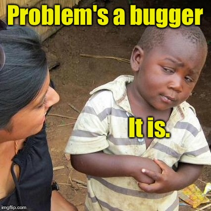 Third World Skeptical Kid Meme | Problem's a bugger It is. | image tagged in memes,third world skeptical kid | made w/ Imgflip meme maker