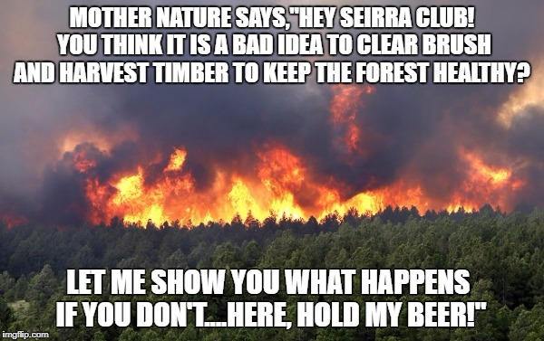 "Forest fire | MOTHER NATURE SAYS,""HEY SEIRRA CLUB! YOU THINK IT IS A BAD IDEA TO CLEAR BRUSH AND HARVEST TIMBER TO KEEP THE FOREST HEALTHY? LET ME SHOW YO 